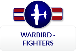 Fighters Icon 2