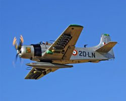 WARBIRDS - FIGHTERS | Courtesy Aircraft